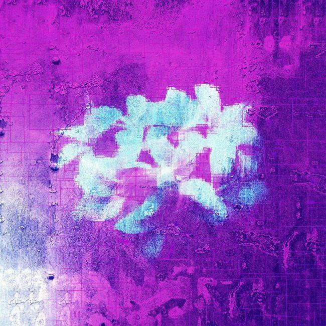 purpleflowers_finalartwork